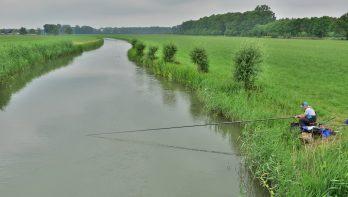 De Kromme Rijn: schilderachtig en visrijk riviertje