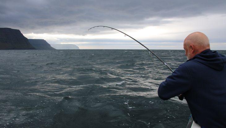 Beet IJsland Festival Dag 2; driften binnen en buiten het fjord