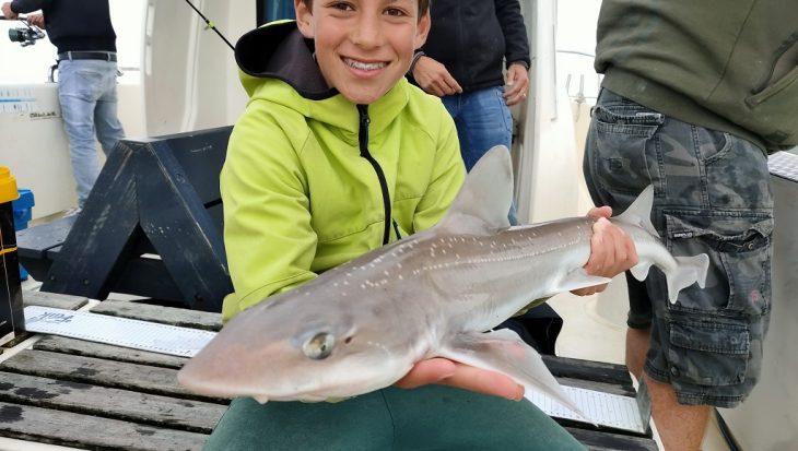 Spannende 'haaienstrijd' tussen vader en zoon Verbruggen
