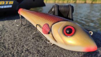 Vissen met jerkbaits in polders en kanalen